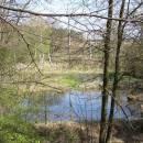 Kunický rybník, 20.4.2016, foto Vojtěch Kodet