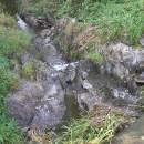 Borský rybník, 23.9.2009, foto Vojtěch Kodet