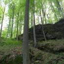 PP Vysoký kámen u Smrčné, 4.5.2012, foto Vojtěch Kodet